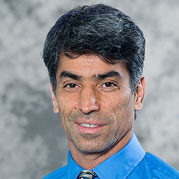 Homayoun Valafar, Ph.D.